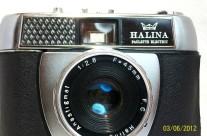 Halina Paulette Electric